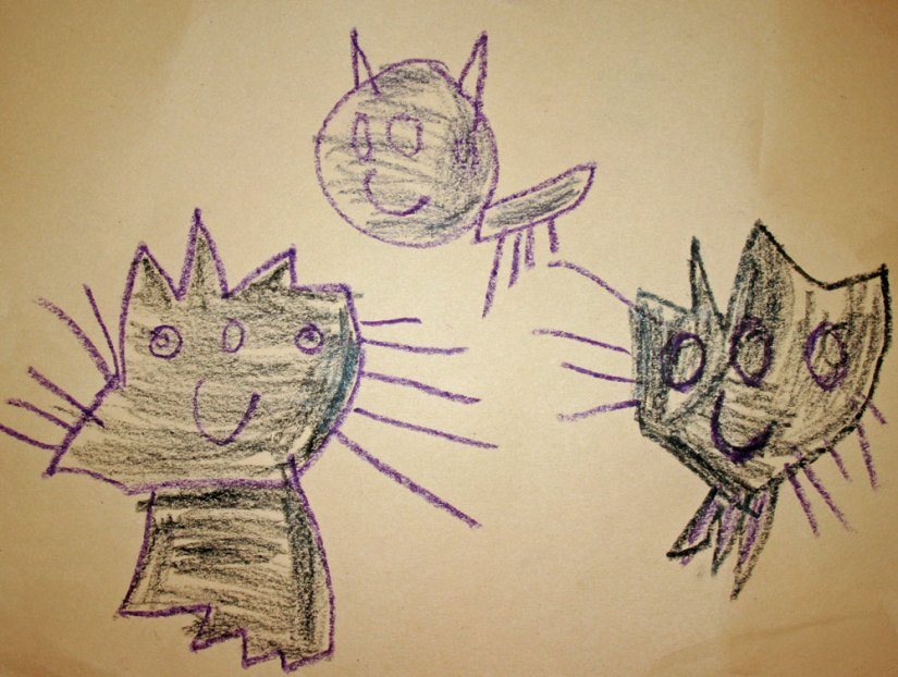 sam's-cats