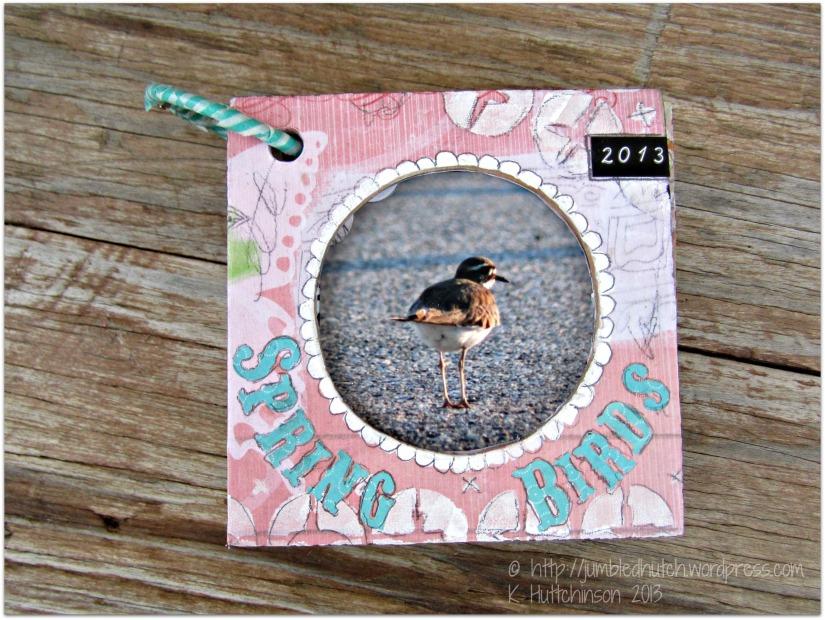 GJSspringbirdsbookfront